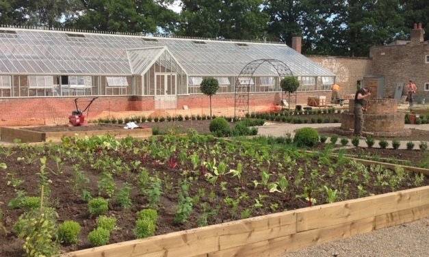 Historic Glasshouse Brought Back To Life After More Than 70 Years