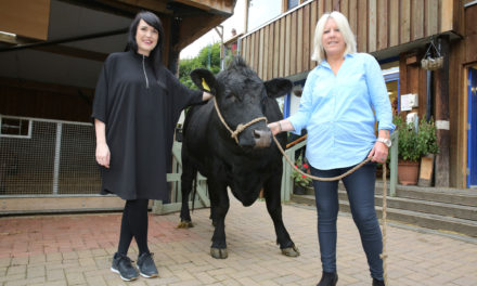 Rescue package secures Ouseburn Farm's future