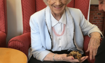 Creepy crawlies entertain care home residents