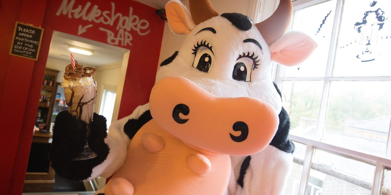 Gala shakes things up for pantomime cow