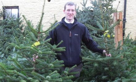 Christmas Events at Raby Castle