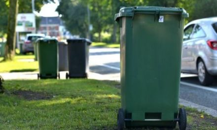 Last green bin collection for this year