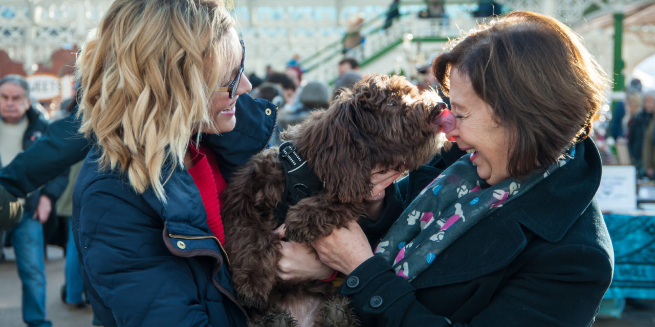 Stop, Shop and Paws at Tynemouth Market