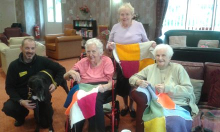 Knitting group's cosy gifts for stray dogs