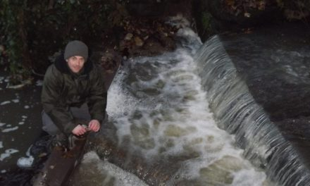 Successful fish migration in Brancepeth Beck for over 150 years