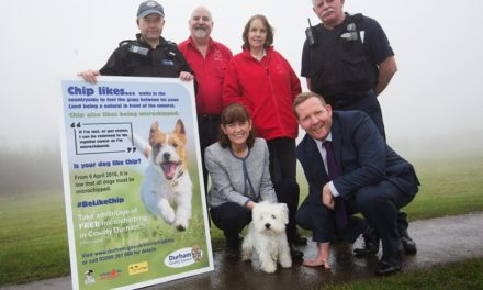 1,700 dogs microchipped through #BeLikeChip