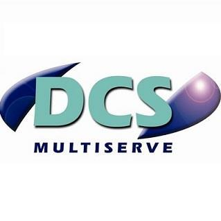 DCS Multiserve – Insights into salaries