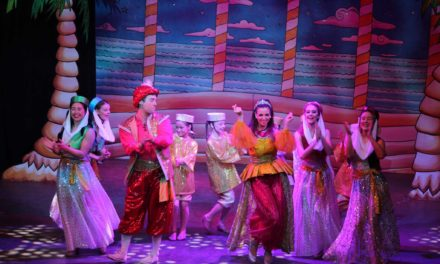 Aladdin at Hartlepool Hall review (16th December)
