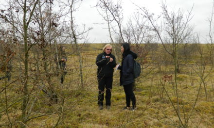 Northumberland National Park is on the hunt for young rangers
