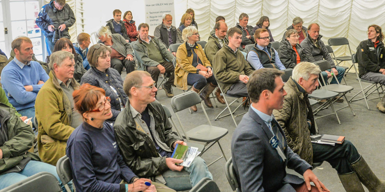 Seminars and Workshops a Key Feature at NSA North Sheep 2017