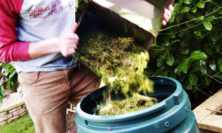 Lifting the lid on home composting