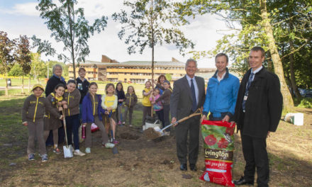 Tree re-planting continues at County Hall site