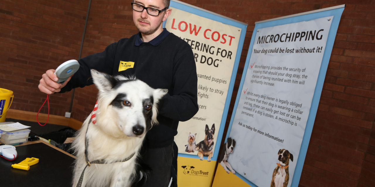 Free Events for Dog Owners