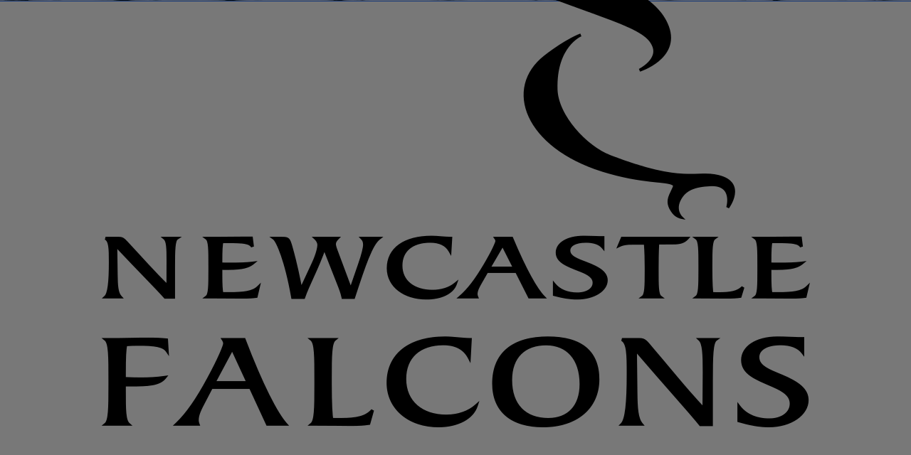 Newcastle Falcons' Gary Graham called up by England