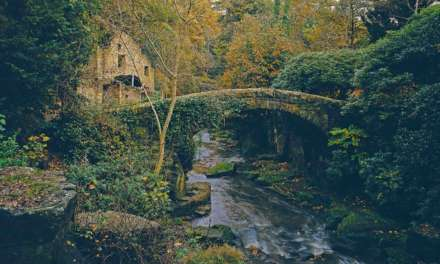 Jesmond Dene & Walker Park: It's time to pick the nation's favourite parks