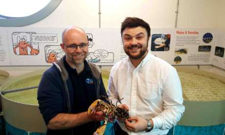 South Shields seafood restaurant commits to sustainability in unique lobster initiative