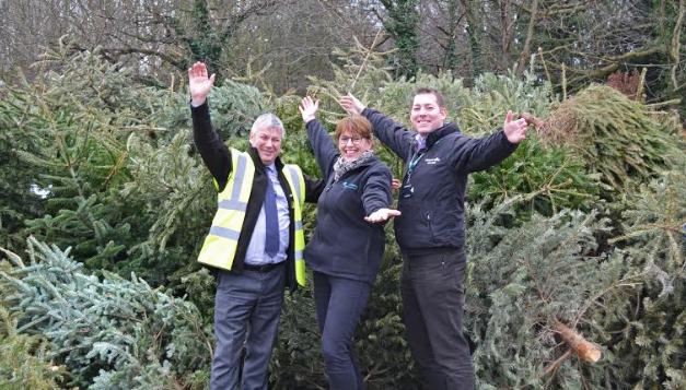 Local charity collects over 800 real Christmas trees