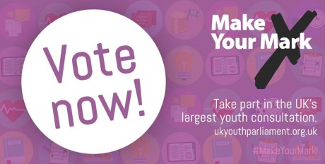 Voting opens for Darlington's next Youth MP