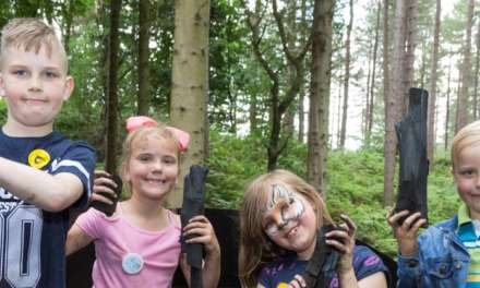 Local businesses get crafty for Chopwell WoodFest