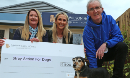 Barking up the right tree! Housebuilder supports local dog rescue kennel