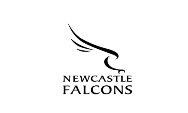 Newcastle Falcons sign North Harbour flanker Connor Collett