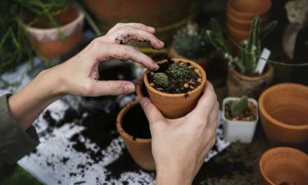 How costly is gardening in the UK?