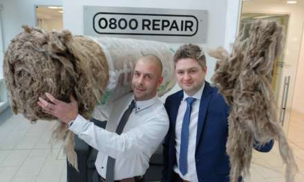 Double awards success for 0800 Repair