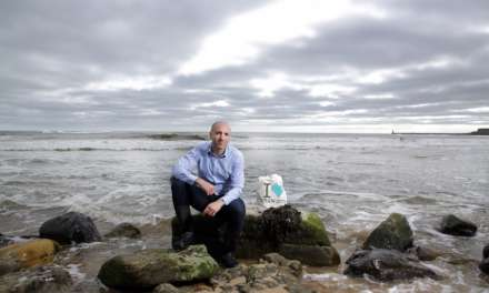 Seaweed & Co targets growth through exports