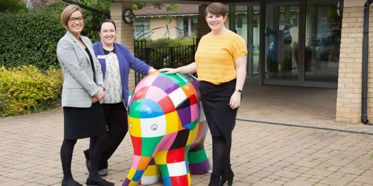 HAVE YOU HERD THE NEWS? FIRST CLASS SUPPLY LEAD ELMER'S GREAT NORTH PARADE AS OFFICIAL LEARNING SPONSOR
