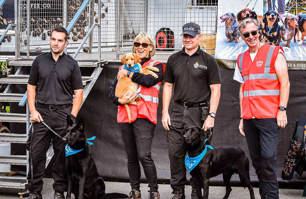 Walk for Wag raises vital funds for North East charity