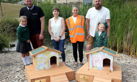 Local Primary School design duck development for St. Benedict's Hospice