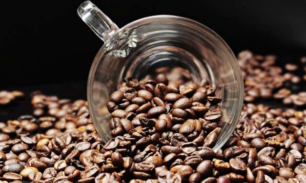 A fair trade journey: from plant to cup