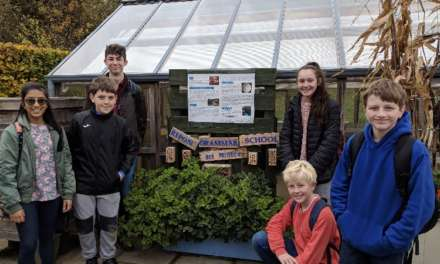 Students' science project creating a buzz
