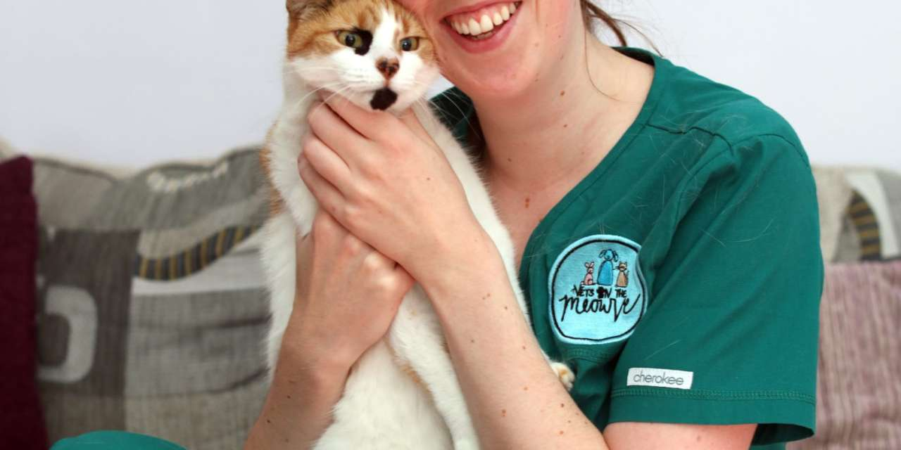 ROUND OF A-PAWS FOR ENTREPRENEURIAL NEW NORTH EAST VET