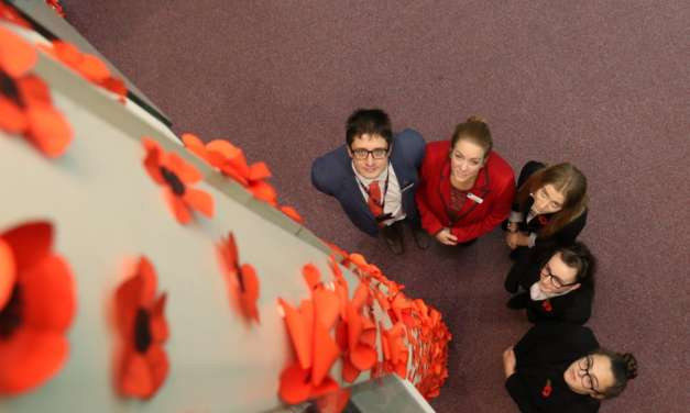 Academy pays tribute to war dead in 'pillars of poppies' installation