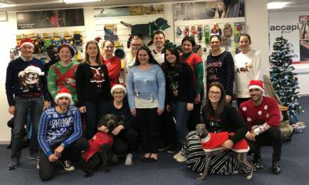 Charity Christmas Jumper Day with a Four-Legged Difference