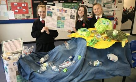 Hermitage Academy students illuminate important issues this Christmas