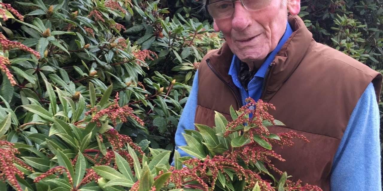 Volunteer Brian's a blooming marvel at 90