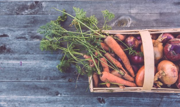 You Are Where You Eat: Foodie Guide Reveals Simple Ways to Eat More Sustainable