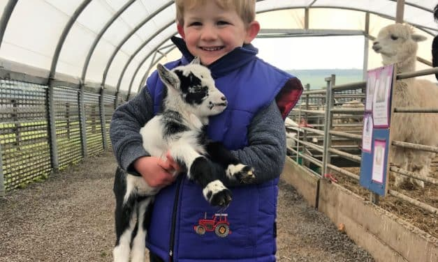 Durham Farm Named as a UK Top Visitor Attraction