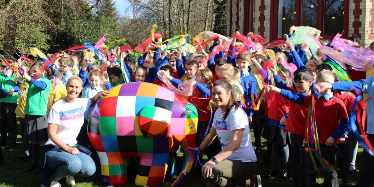 FOLLOW THE HERD TO ELMER'S PATCHWORK PARADE