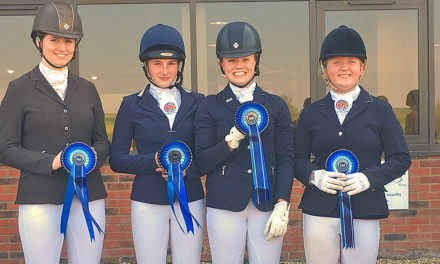 Riders rein in a host of prizes at top equestrian event