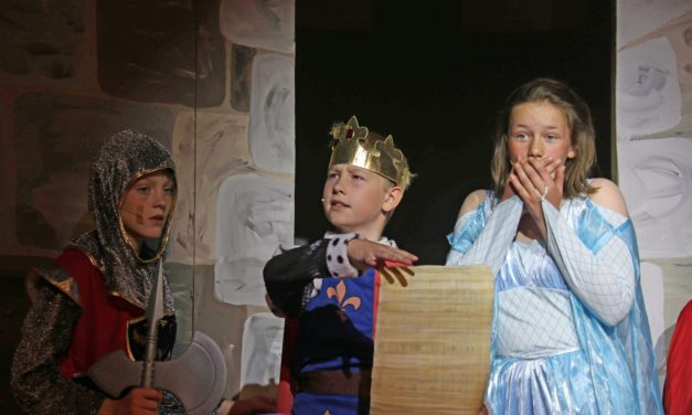 Pupils head back in time to knight school