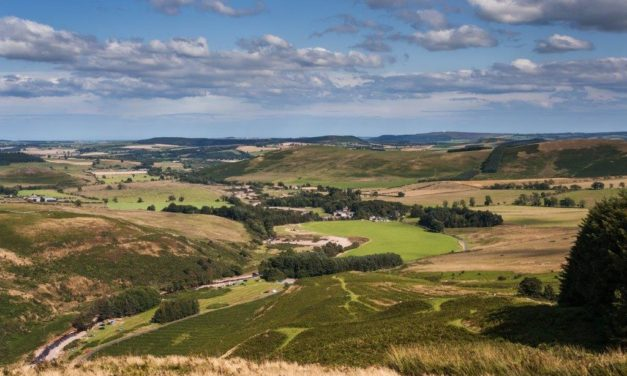 Final call to help Northumberland National Park shape its future