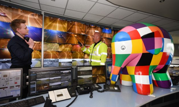 Tyne Tunnel seeks local community groups to join the 'herd' for the Elmer Trail