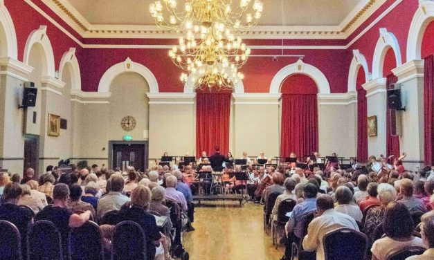 Darlington Orchestra Summer Concert 2019