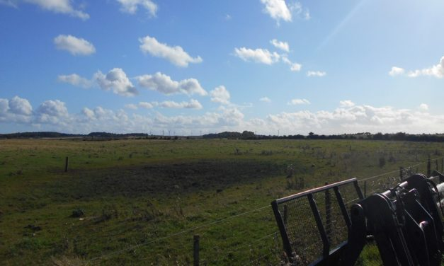 Banks Mining Welcomes Court Of Appeal Decision On Save Druridge Highthorn Case