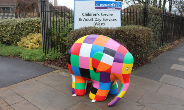 Newcastle Helix supports Elmer's Great North Parade