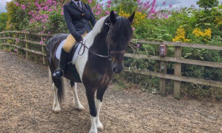 Hat-trick of awards for Laura at national dressage event