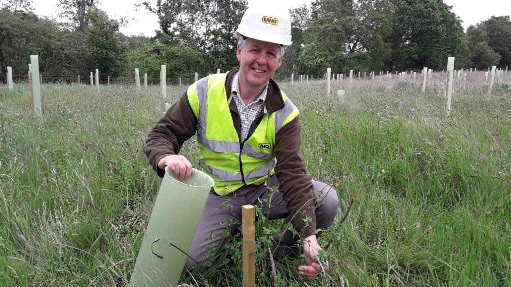 Banks Mining Completes First Phase Of Tree Planting At Bradley Surface Mine As Plans For New Community Wildlife Area Progress